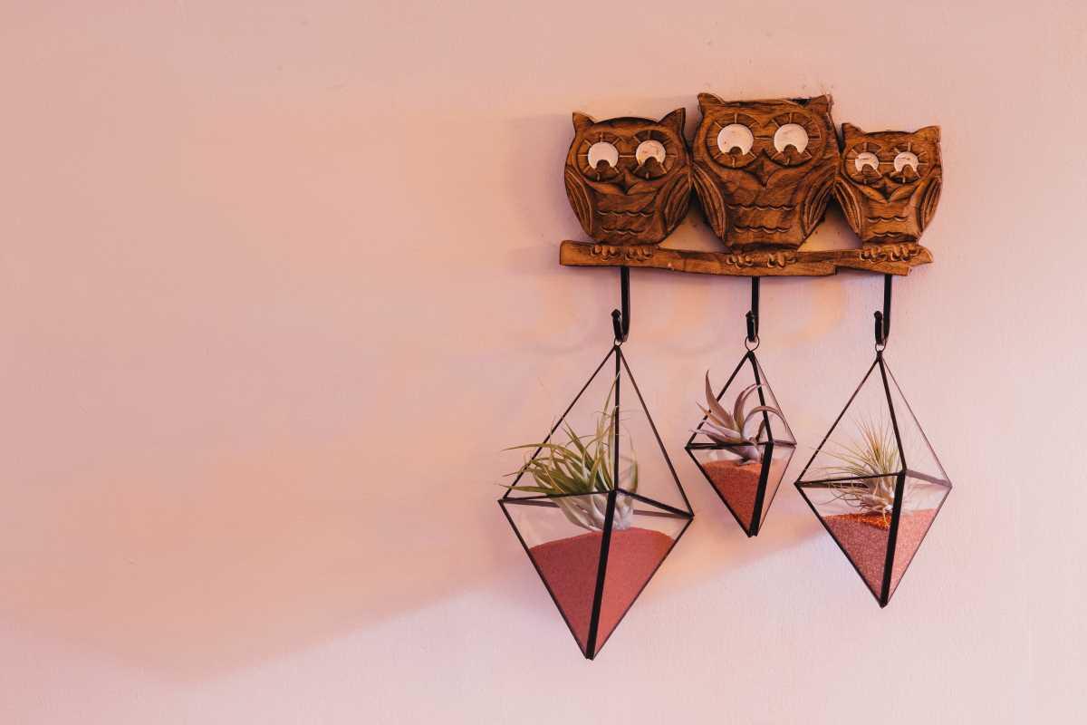 Terariu cu plante aeriene suspendat, din sticla handmade