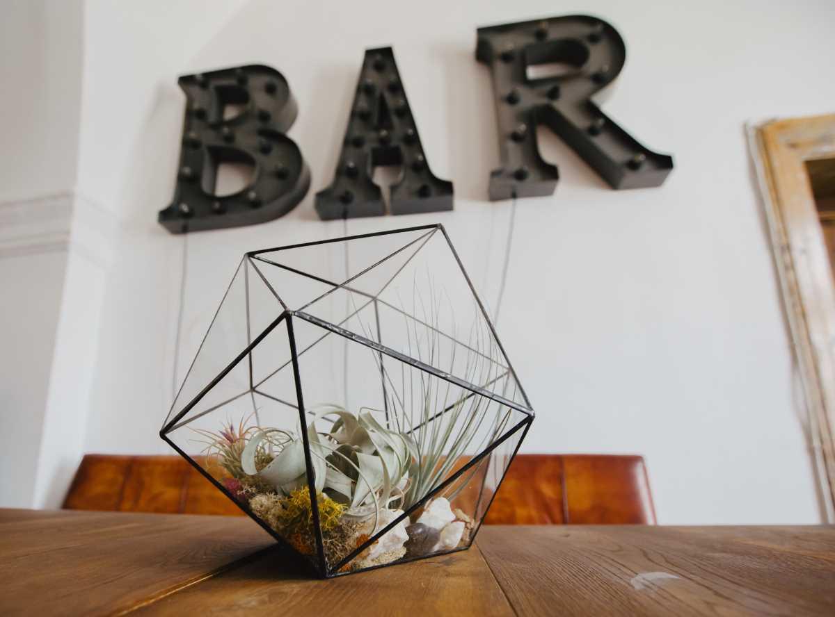 terariu cu plante aeriene, handmade geometric, icosaedru