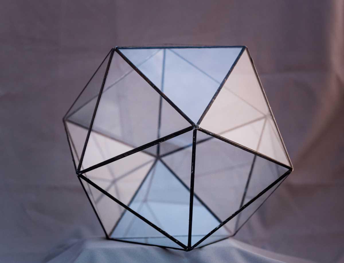 terariu geometric, muchii negre, icosaedru, greenarium