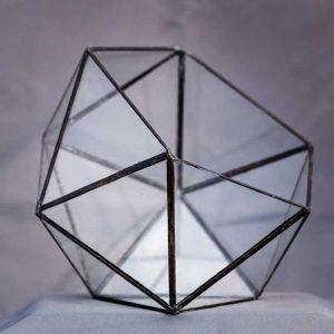 terariu din sticla, semi-icosaedru mediu cu muchii negre, greenarium