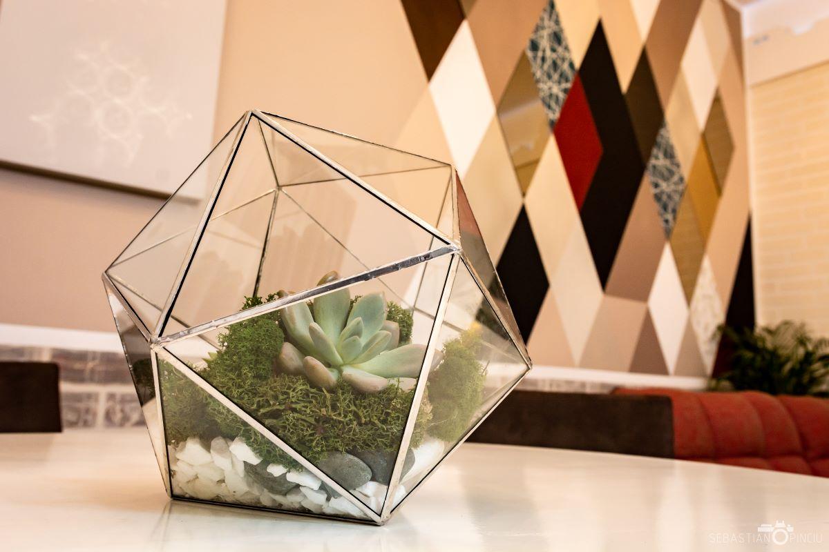 Terariu geometric cu planta suculenta in suport de sticlă, icosaedru, in apartament cu design modern