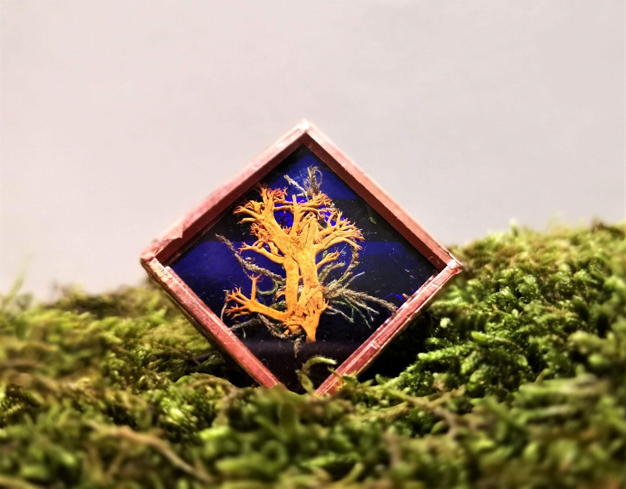 Martisor Brosa greenarium patrat din sticla