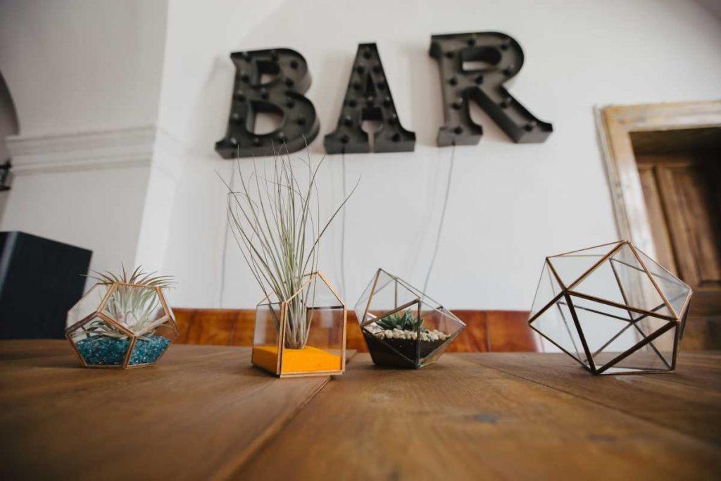 Terarii cu plante aeriene, din sticla, dodecaedru, casuta, icosaedru, bar, cafenea