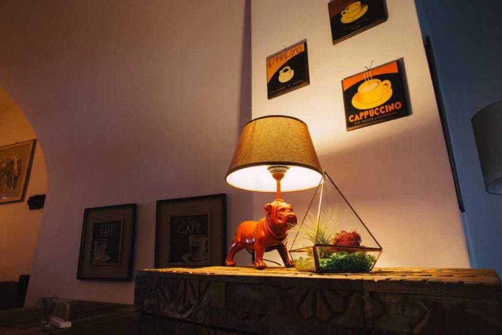 Terariu cu planta aeriana, piramida, sticla, lucrat manual, design modern, cafenea, lampa cu buldog