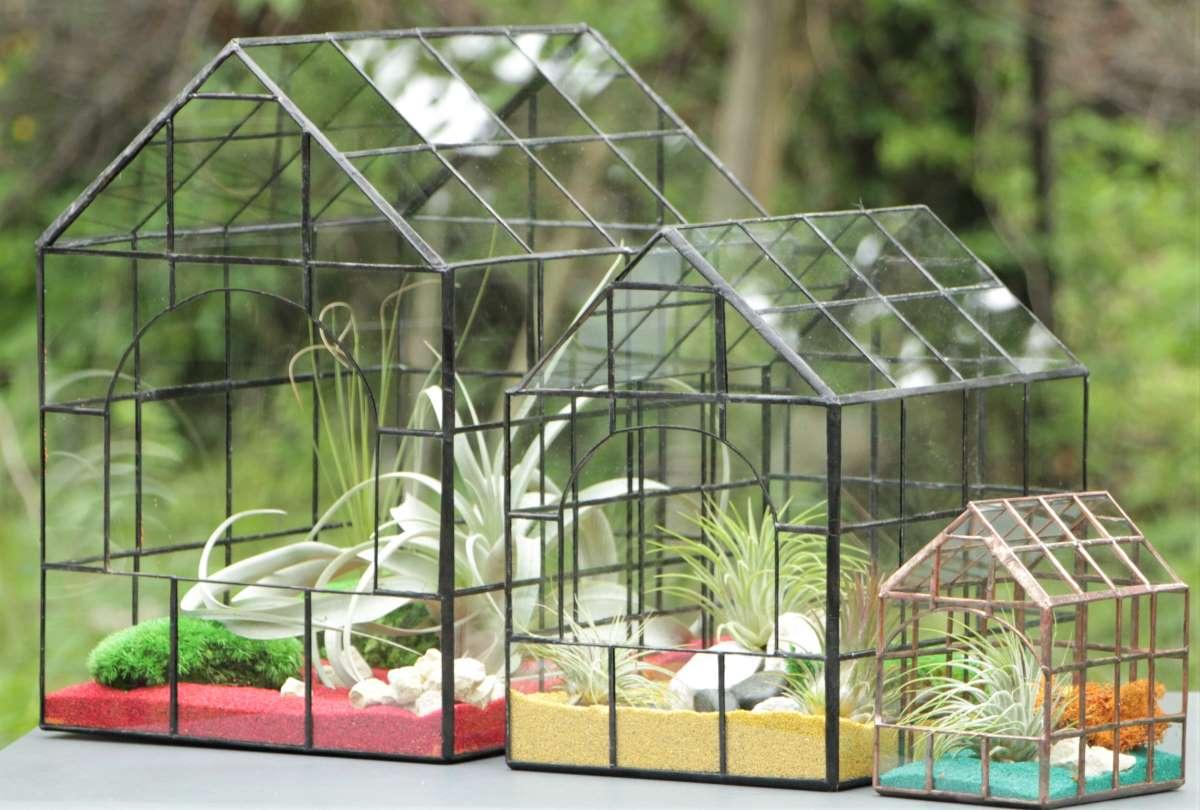 Terariu plante, în formă de căsuță mozaic, aranjament cu plante aeriene