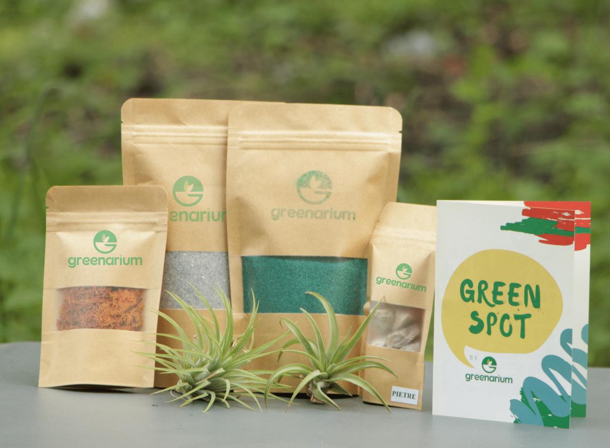 Kit pentru terarii cu plante aeriene sau suculente, ambalaj natur