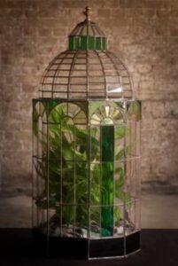 terariu cu plante verzi, sticla colorata si transparenta, perete din caramida