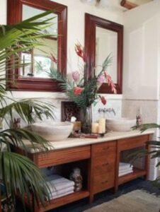 baie moderna amenajata cu plante exotice, mobilier din lemn