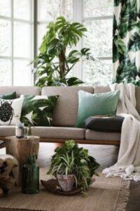 plante exotice intr-un colt de camera luminoasa, canapea cu perne crem si verzi