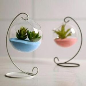 terariu cu plante in forma de glob, suport alb, nisip albastru si roz