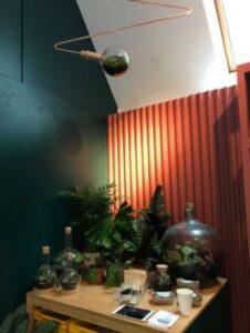birou de lemn cu plante verzi si terarii cu plante, decor inchis la culoare
