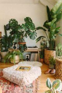 camera cu plante inalte exoticem ghivece maro din rafie, discuri vinil