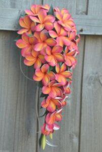 floare portocaliu cu roz, poarta din lemn