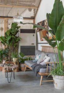 decot cu plante exotice inalte si de diferite soiuri, canapea din lemn cu perne gri