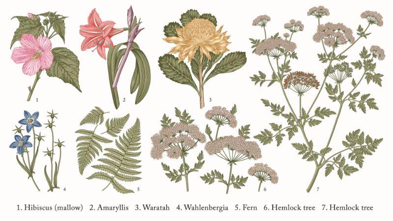tapet de flori colorate, fundal alb, flori roz, albastre, galbene