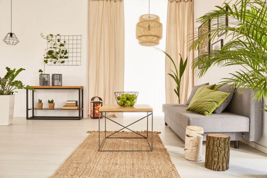 sufragerie moderna, plante verzi, canapea gri