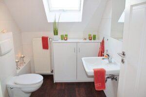 Toaleta alba, prosoape rosii, pkanta verde langa geam