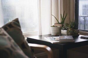 Masuta de cafea cu ghivece cu plante, carti ca decor