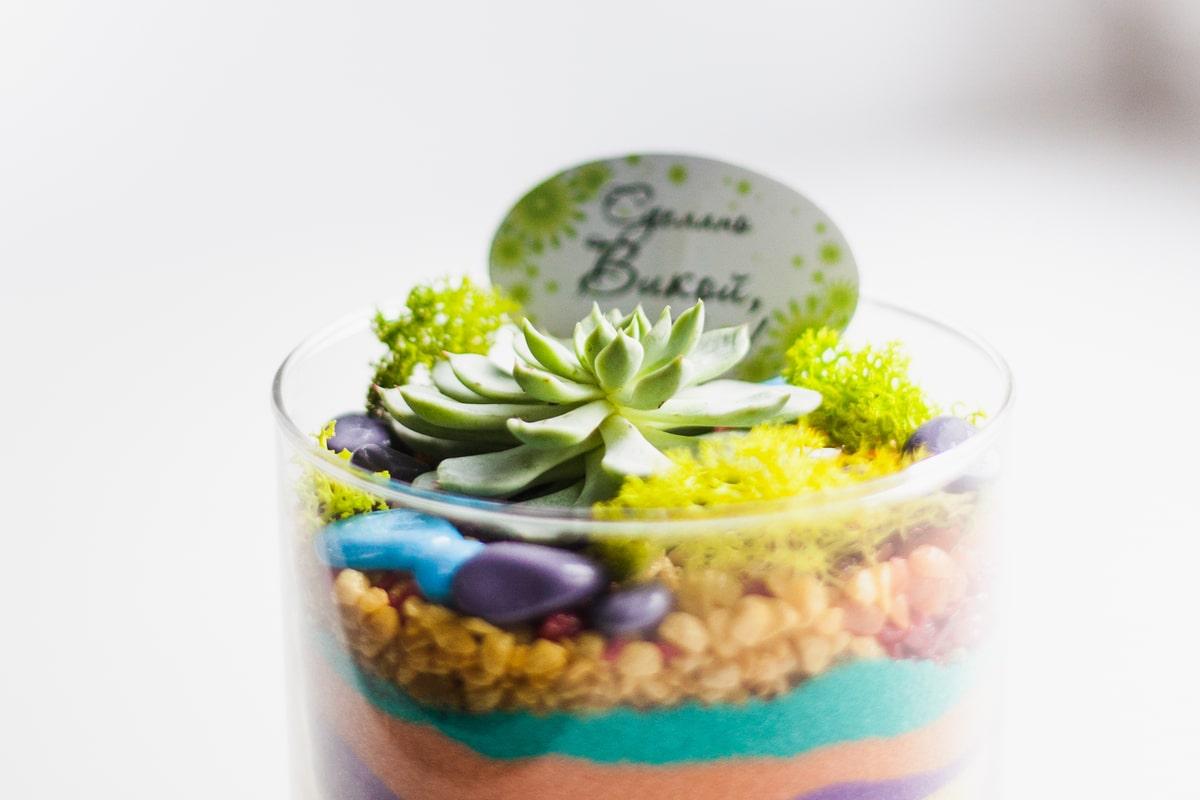 marturie de nunta cu un terariu intr-un pahar de plastic, planta suculenta, nisip colorat