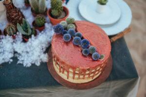 Tort cu glazura colorata, plante deasupra, suculente in plan secundar