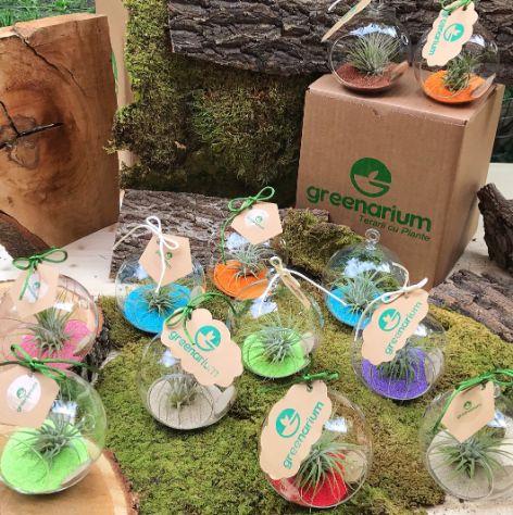 set de marturii pentru nunta sau botez, in glob de sticla mic cu planta aeriana, cu mesaj personalizat
